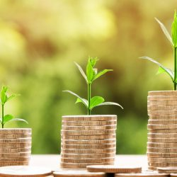 WMARR uruchamia nabór wniosków o granty na kapitał obrotowy dla przedsiębiorców!