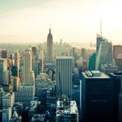 Nowe możliwości na rynku amerykańskim – webinarium PAIH