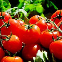 Kolejne międzynarodowe spotkania b2b online dla żywności wysokiej jakości