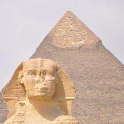 """Webinarium """"Biznes w Egipcie"""" (22.06.21)"""